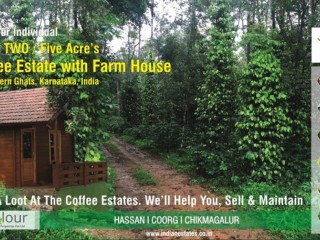Coffee Estate and Farm Plots for sale in Sakleshpur