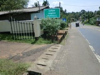 Valuable land for sale in ratnapura pelmadulla.