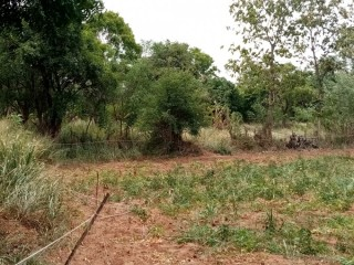 Land for sale Dambulla