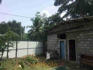 Land for sale in Kesbawa | කෑස්බෑව නගරයෙන් ඉඩමක් විකිණීමට ඇත