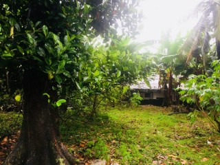 Land for sale in Maharagama !