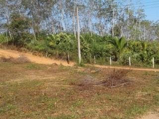 Land For Sale In Warakagoda