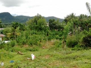 Land for Sale in Kuruwita Paradise