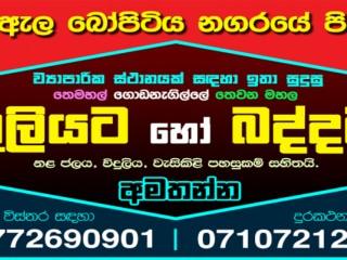 Building For Rent In Ja-Ela (Bopitiya Town)