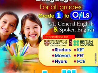 English Online and Home visit Classes