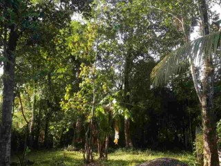 Land for sale in Matara Bandaththara